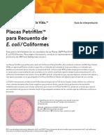 3M Petrifilm EC Guía de Interpretación.pdf