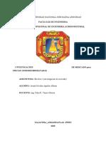 electivo proyecto.docx