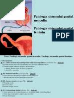 10. Patologia sistemului genital masculin. Patologia sistemului genital feminine