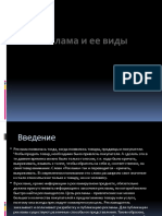Презантация с сайта www.skachat-prezentaciju-besplatno.ru - 10804650