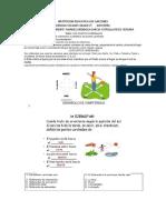GUIA C. SOCIALES GRADO 2