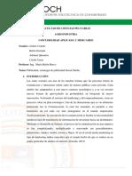 Publicidad_Estrategia de Social Media