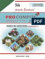 3_BASES_PROCOMPITE_REGIONAL_AYACUCHO_2020_IMPRIMIR.pdf