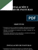 INSTALACIÓN Y MANEJO DE PASTURAS