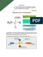 aminoácidos estructura, escenciales y no escenciales