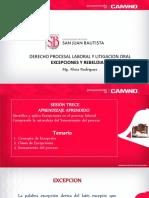 SESION TRECE EXCEPCIONES.pdf