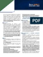 1565394734-Convocatoria SUBE-T_1.pdf