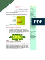 A construcao e o meio ambiente.doc