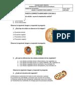 examen 5°-nuevo