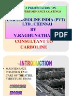 RAGHUCARBOLINEPRESENTATIONS22122011.pdf