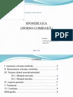 SPONDILOZA dorso lombara.pptx