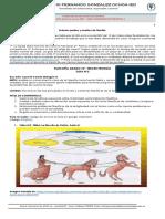 Guía filosofía 10º(2)