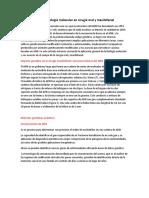 Aplicaciones de la biología molecular en cirugía oral y maxilofacial resumen.docx