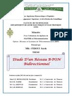 Ms.tel.Feroui.pdf