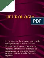 Anatomía animal I. Neurología Diapositivas