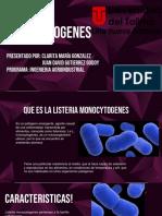 Seminario listeria monocitogenes