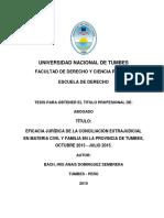 TESIS - DOMINGUEZ SEMBRERA.pdf