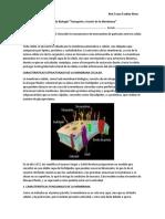 Guía de Biología membrana