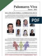 Boletín Enero 2011 - IU Palomares del Río