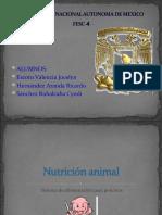 alimentacion porcina