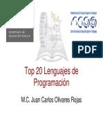 lenguajes_2007.pdf