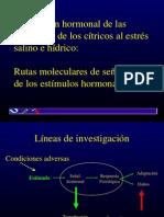 regulación hormonal en planas