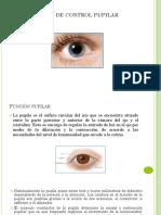 Modelado del Control Pupilar_V2