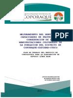 Plan de Trabajo PIP Coporaque.pdf