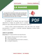 La-Sangre-para-Segundo-Grado-de-Primaria.pdf