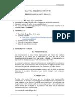 OC GUIA DE LAB 03 2020 1