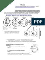 divisioncelula-misosisycitocinesis-180101165809