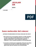 BASE MOLECULAR DEL CANCER, AMADA  F.pptx