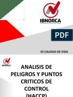 PLANTILLA 2019 Análisis de Peligros y Puntos Críticos de Control (HACCP)2