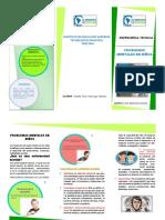 TRIPTICO PROBELMAS MENTALES EN NIÑOS.pdf