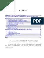 Proiect_analiza_financiara_Cristina