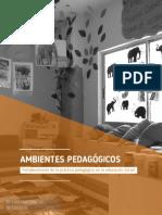 C AMBIENTES PEDAGÓGICOS.pdf