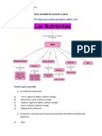 Guía remedial de nutrición y salud