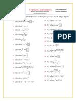 Guía Ejercicios Funciones Homogéneas