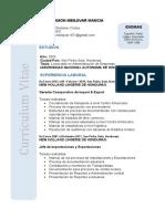 Resumen Curricular Felix (1).docx