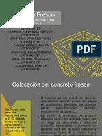 concreto fresco (borrador)