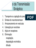 2)Modelo da Transmissão Sináptica PDF