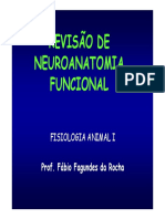 Aulaneuroanatomia2008