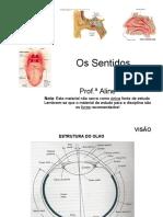 Os_sentidos_-_parte_I_-_IB306