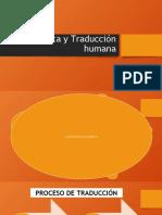 SEMÁNTICA Y TRADUCCIÓN.pptx