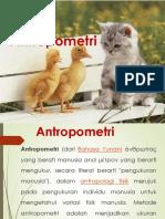 VII Antropometri