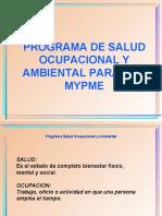 PROGRAMA DE SALUD OCUPACIONAL Y AMBIENTAL-2.ppt