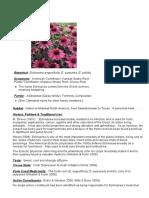 Herb Med 2 2010 - Echinacea