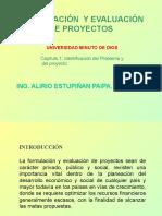 (1)  IDENTIFICACION DEL PROBLEMA Y DEL PROYECTO