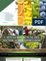 AGROEXPORTACIÓN CD