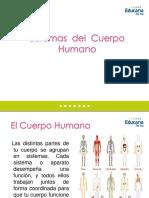 PPT Ciencias 5º_Sst humanos_Marzo 2012